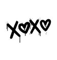 graffiti xoxo word sprayed isolated on white vector image vector image