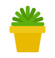 green plant in a yellow pot flat isolated vector image vector image