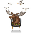 Moose and birds on television screen vector image vector image