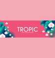 tropic summer exotic design with palm leaves vector image vector image