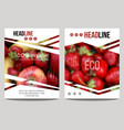 brochure design template with blur background vector image