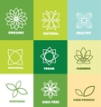 Abstract flower organic natural food logo badge vector image vector image