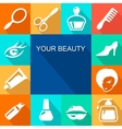 Beauty and makeup flat icons vector image