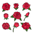 pictures set of various roses love symbols vector image