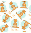 seamless pattern with cute cartoon cat in yoga vector image