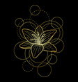 tattoo with lily and circles on black background vector image vector image