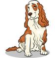 cocker spaniel dog cartoon vector image