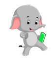 cute elephant holding book vector image vector image