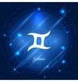 Gemini sign of the zodiac vector image