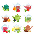 glass and ceramic teapot set natural herbal tea vector image vector image