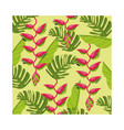 heliconias plants tropical pattern background vector image vector image