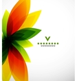 Colorful abstract flower design template vector image