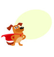 funny dog character in red cape standing as hero vector image vector image
