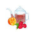 natural herbal tea in a glass transparent teapot vector image