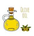 colorful hand drawn olive oil bottle vector image