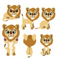 little lion cub sitting standing and lying vector image