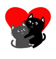 Black gray cat hugging couple family hug vector image
