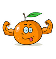 cartoon orange vector image vector image
