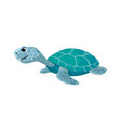 cute turtle isolated cartoon image vector image vector image