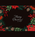 horizontal frame or border made of branches and vector image vector image