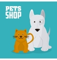 Pet shop with cat and dog design vector image