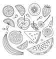 set nutrient-rich raw fruits in boho style vector image