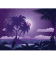 Tropical island at night vector image vector image