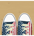 usa shoes vector image vector image