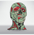 zombie head with brain vector image vector image