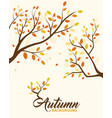 autumn background design element vector image vector image