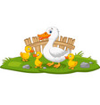 cartoon happy mother duck and ducklings vector image vector image