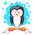 cute crazy penguin ice vector image