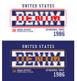 denim t-shirt and apparel design usa style vector image vector image