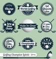 Golfing Champion Labels and Icons vector image vector image