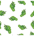 Green grape seamless pattern background Grape wine vector image