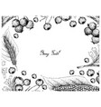 hand drawn frame of hawthorn berries and himalayan vector image vector image