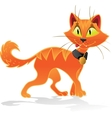 Pumpkin-orange Halloween cat vector image vector image