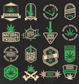Set of cannabis marijuana bong shop labels badges vector image vector image
