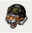 vintage concept angry biker tiger head vector image vector image