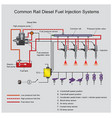 common rail diesel systems vector image vector image