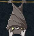 hanging bat vector image vector image