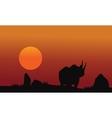 Rhino silhouette walking in savanna vector image vector image