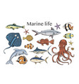 set with underwater animals vector image vector image