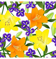 yellow orange lily and blue iris flower on white vector image vector image