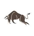 bull charging bull attack graphic vector image vector image