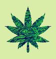 cannabis marijuana leaf vector image vector image