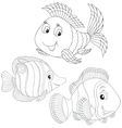 Coral fishes vector image vector image