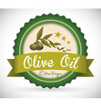 olive oil vector image vector image
