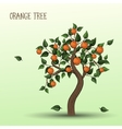 Orange tree with fruits oranges vector image vector image