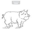 pig hand-drawn vector image vector image
